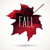Fall triangular maple leaf Stock Images