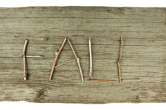 Fall Twigs on Rustic Wood Board stock photo