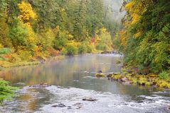 Fall Umpqua Royalty Free Stock Photos