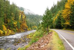 Fall Umpqua Royalty Free Stock Images