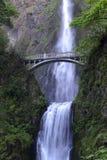 Fall- und Fußbrücke Multnomah üppige grüne Einstellung in der naher Berg-Haube und in Portland Oregon im Columbia River sättigen  stockbilder