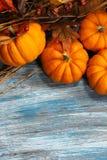 Fall und Halloween-Hintergrund Stockfotografie