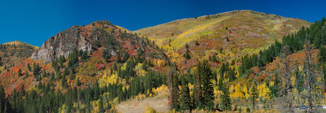 Fall in Utah Mountains Royalty Free Stock Photos