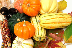 Fall Vegetables Royalty Free Stock Photos