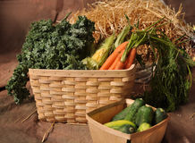 Fall Vegetables in 2 baskets. Fall vegetables including carrots, corn, kale and cucumbers with hay background, in farmer's baskets Stock Photo