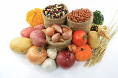 Fall Vegetables and squashes. Stock Photos