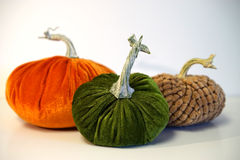Fall velvet pumpkin trio Royalty Free Stock Images