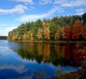 Fall verlässt auf einer Halbinsel, die in einem See reflektiert wird Stockbilder