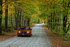 Fall in Vermont. Dirt road during fall time in Vermont stock image