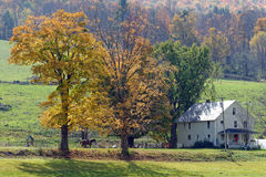 Fall in Vermont. Photo of a farm in Vermont during fall time stock image