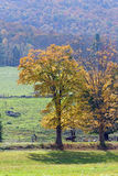 Fall in Vermont. Photo of a farm in Vermont during fall time Stock Photo