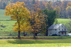 Fall in Vermont Royalty Free Stock Images