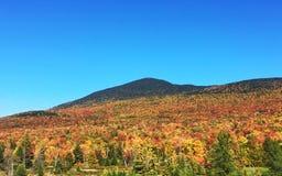 Peak Leaf Season in Vermont Royalty Free Stock Images