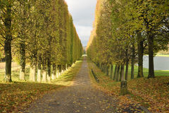 Fall in Versailles Royalty Free Stock Photos