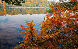 Fall view of the lake Stock Photography