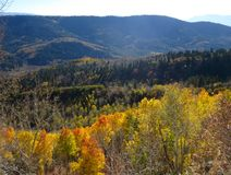 Fall View of Uinta Mountain in Utah. Uinta Mountain Fall view from Upper Setting Road Stock Photo