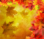 Fall vintage background Royalty Free Stock Image