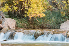 Fall on the Virgin River Stock Image