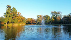 Fall in the Vondelpark in Amsterdam Netherlands. Fall in the Vondelpark in Amsterdam the Netherlands Royalty Free Stock Image
