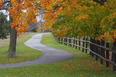 Fall Walk Royalty Free Stock Photography
