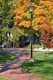 Fall Walkway Royalty Free Stock Image