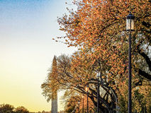 Fall Washington Monument. Fall leaves in front of the washington monument during sunset Stock Photo