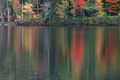 Fall in the Water. Fall foliage on land and reflected in lake water Stock Photography