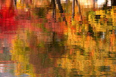 Fall on water reflection stock photos