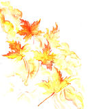 Fall watercolor background. Background, element for design, postcard, walpaper Royalty Free Stock Images