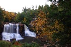 Fall waterfall. Waterfall running through trees in fall Royalty Free Stock Photo
