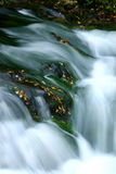 Fall waterfall. Blurred motion of water with fall leaves.Great Smoky Mountain National Park Royalty Free Stock Images