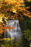 Fall Waterfall. Fall color at waterfall in Great Smoky Mountains National Park Stock Image
