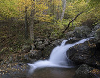 Fall waterfall. A gentle stream creates a waterfall in a colorful fall forest Stock Images
