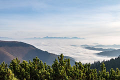 Fall weather inversion in mountains - above the clouds Royalty Free Stock Photo