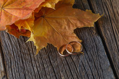 Fall wedding decoration on rustic wood Royalty Free Stock Photo