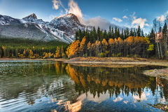 Fall at Wedge Pond. Fall colours at Wedge Pond in Kananaskis, Alberta Canada Royalty Free Stock Image