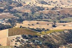 Fall-Weinberge Paso Robles angesehen von einem Flugzeug - erstaunliche Herbstfarben Lizenzfreies Stockbild