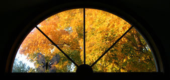Fall window. Sunset bathes the autumn leaves in warm light through the round window stock image