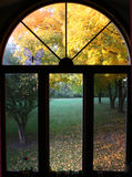 Fall window Royalty Free Stock Image
