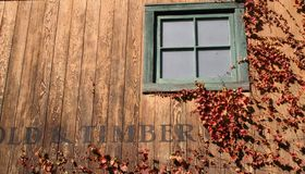 Fall Window. Leaves of fall Royalty Free Stock Images