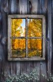 Fall Window Design Stock Image