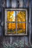 Fall window design Stock Image