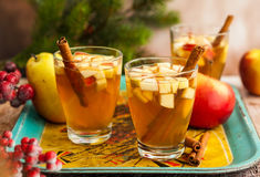 Fall and winter drink Stock Images