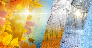 Fall and winter, weather forecast concept. Beautiful seasonal background - two seasons of year collage. Vibrant colorful images of different time of year - fall royalty free stock image