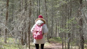 Fall woman backpacker hiking on the path in the forest mountains during autumn. 20s 4k. stock video footage