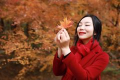 Fall woman happy and bliss , Beautiful woman in autumn park Royalty Free Stock Photo