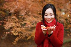 Fall woman happy and bliss , Beautiful woman in autumn park Stock Images