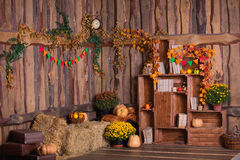 Fall wooden interior with pumkins, autumn leaves and flowers. Halloween thanksgiving decoration.
