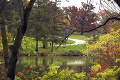 Fall woods with a cement path and pond. Royalty Free Stock Image