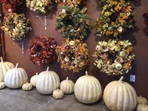 Fall wreaths and pumpkins royalty free stock photo